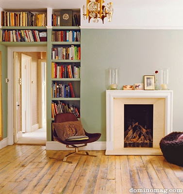 Light grn wall fireplace books